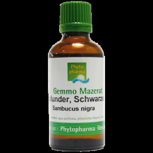 Holunder Schwarzer, Gemmo-Mazerat Phytopharma